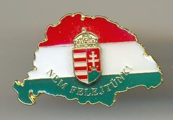 Nagy magyarország zászló